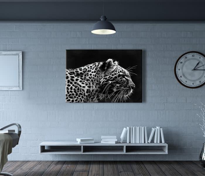 leopar nerede bulunur