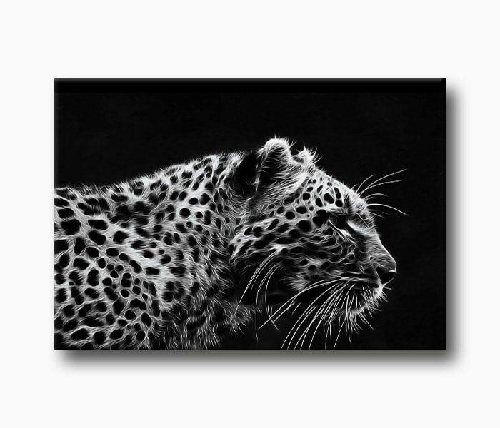 yırtıcı hayvan leopar