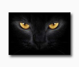 kara kedi, kara kedi sanatsal