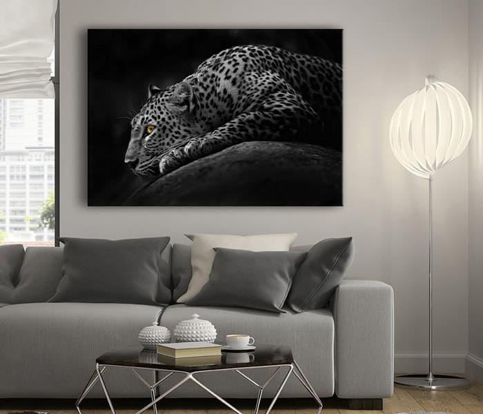 leopar lavi tasarım