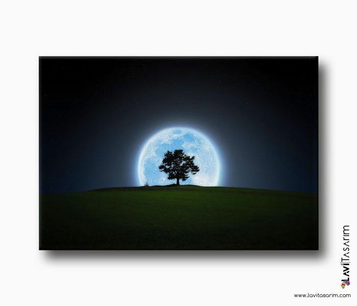 ay ve gece lavi tasarım