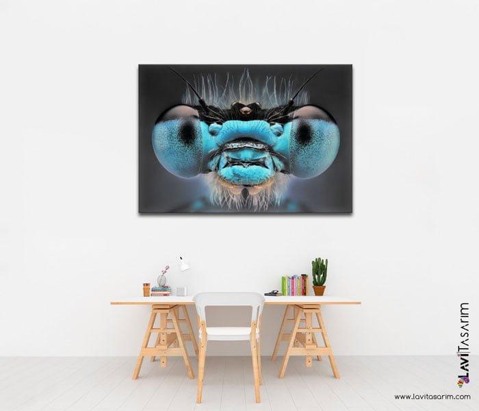 makro çekim böcek tablosu