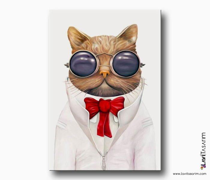 gözlüklü kedi