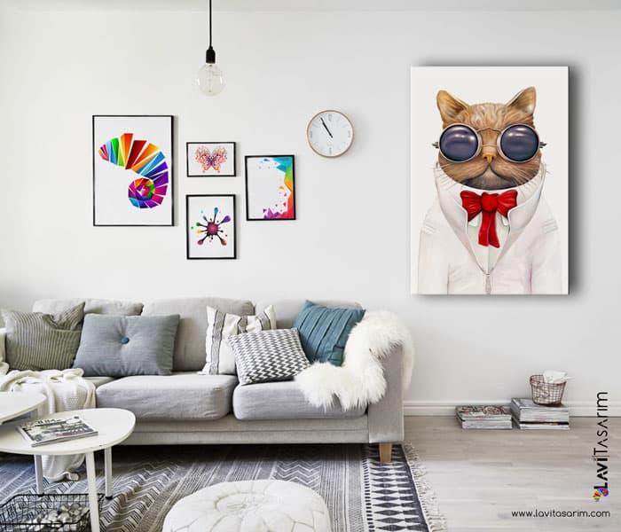uzay gözlüklü kedi,gözlüklü kedi duvar kağıdı